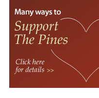 Support The Pines at Davidson in Davidson, NC